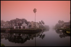 Venice Canal Homes (Pat's Travelogue) Tags: california venice water fog sunrise boats palm canals holloween