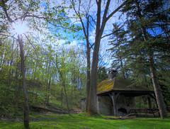 (~Envee's Photograpy~) Tags: park forest spring picnic sunflare keystoneeffect sunlamppost darnthatdistraction stillfiguringoutphotomatix