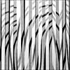 (carol murray) Tags: ink paperstrips threeexposures