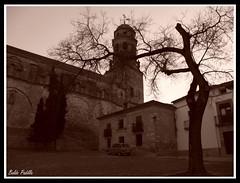 BaeZa_2mil9_10 (Baldo Padilla Fotgrafo) Tags: baeza 2mil9