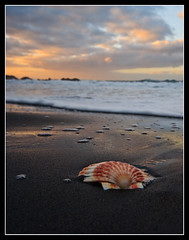 Shell (P Rubens) Tags: blue light sunset sea sky espaa orange reflection nature water clouds canon landscape islands interestingness spain sigma canarias explore tenerife exploreinterestingness canary 1020mm 2008 canaryislands islascanarias sigma1020mm sigma1020 sigma1020mmf456exdc prubens canon400d flickerstenerife