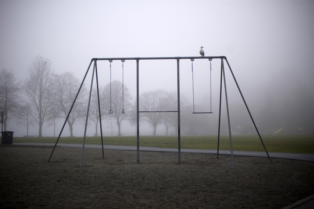 fog chin ups