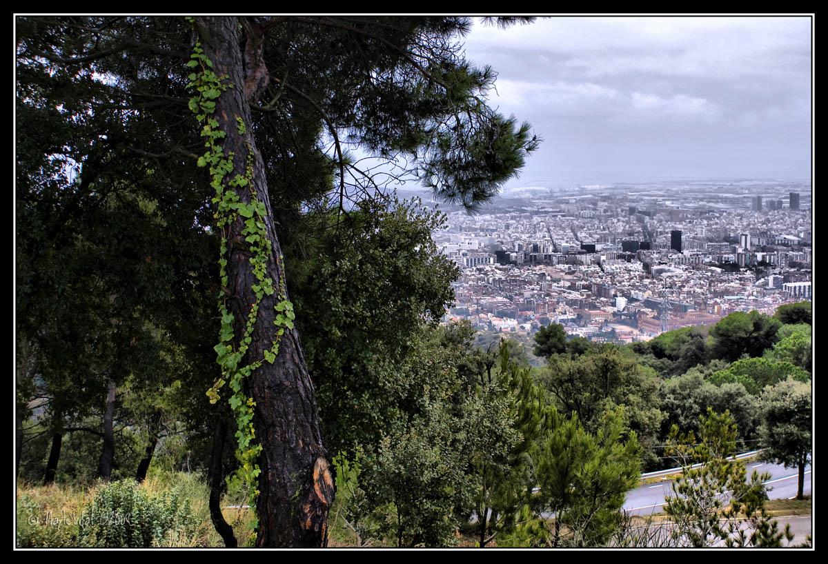 Mirando la ciudad