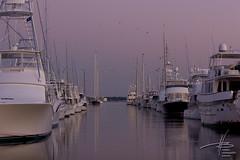 Dockside (delta.V) Tags: bridge sky silhouette sailboat marina coast boat twilight dock marine southcarolina vessel charleston sail slip mast nautical moor
