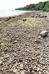 Bd i vandet (fru_green) Tags: sten naturen