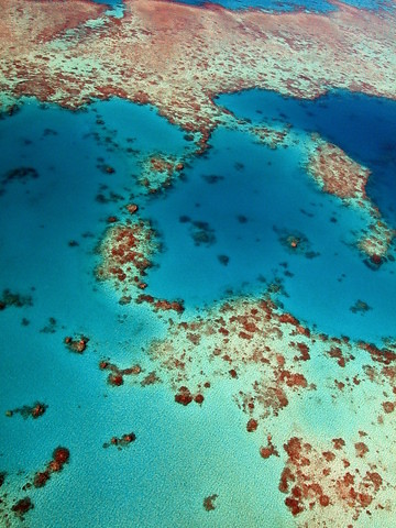 Great Barrier Reef 3