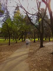El cielo puede esperar (FernandoRey) Tags: argentina la buenos aires safari bosque plata ba fantasma corriendo bosques safariba safaribareloaded safaribalaplata safaribadiagonalesdelaplata