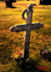 Wooden Cross (Brian 104) Tags: flowers cemetery wooden cross astoundingimage