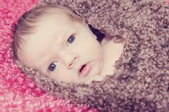 Baby Isabela 4 (Lisa of AspectArtsPhoto) Tags: portrait baby photography nikon photographer bc arts lisa kamloops session aspect d700 novakowski