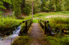 + bridge_into_nature (david.richter) Tags: wood longexposure bridge nature creek forest canon germany landscape flow deutschland photography eos rebel waterfall stream europa europe raw glow outdoor saxony sachsen wildflowers xsi superwideangle erzgebirge singleexposure ishootraw oremountains nohdr nonhdr 450d rebelxsi tokina1116mmf28atx116prodx germanybest