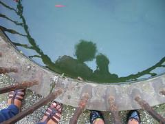 Gi e Isa!!!!!! (telaccia) Tags: acqua palazzo fontana isa piedi cerotto gi ballerine sandali