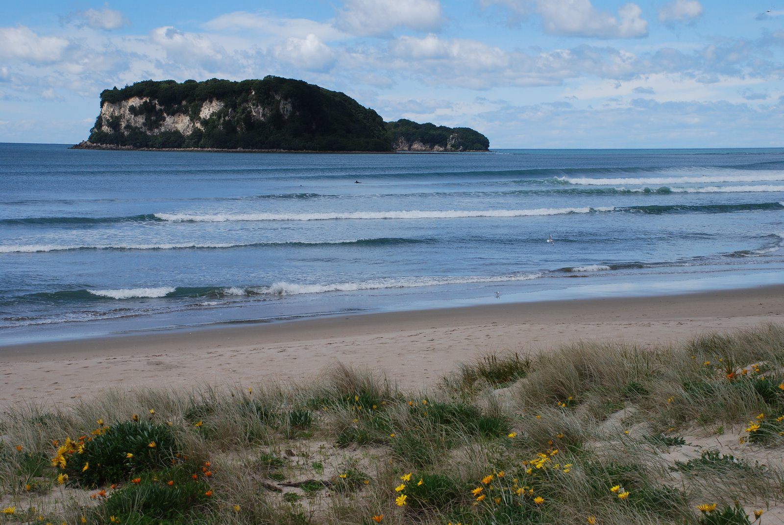 Whangamata New Zealand  city photos gallery : Whangamata Beach, Waikato New Zealand Beaches Reviews, Weather ...