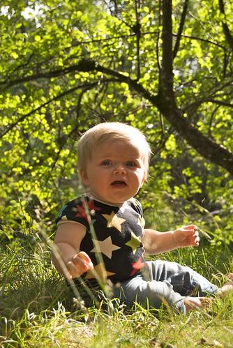 Albert i gräset