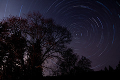 (DanB.) Tags: california tree night stars long exposure startrails pinehurst startrail sequioanationalforest