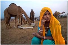 banjaran (Soumya Bandyopadhyay) Tags: morning portrait woman face wide perspective nomad gypsy camels rajasthan pushkarcamelfair canoneos50d tokina1116mm