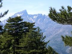 Descente vers Casamaccioli : Paglia Orba et Grande Barrière