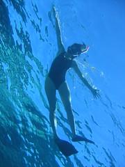 137_3791 (LarsVerket) Tags: egypt snorkling fisk undervannsfoto
