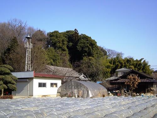 牛沼の火の見櫓(所沢市)