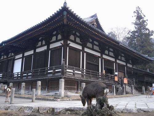 早朝の東大寺(二月堂編)