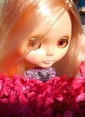 Flowers on my lap