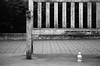 product placement (xgray) Tags: wood bw film water analog cn canon bench eos blackwhite wooden bottle kodak bokeh 400 kodakbw400cn bw400cn ozarka kodakprofessionalbw400cn 1n ef24105mmf4lisusm uploadx canoneos1n postedtophotographersonlj