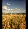 Landscape (Sam ♑) Tags: beautiful eifel theunforgettablepictures overtheexcellence tup2 flickrclassique artistictreasurechest sam8883 daarklands magicunicornverybest sailsevenseas thepyramidgroup