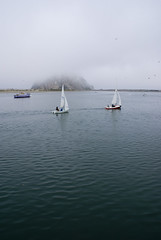 Foggy Morro Bay