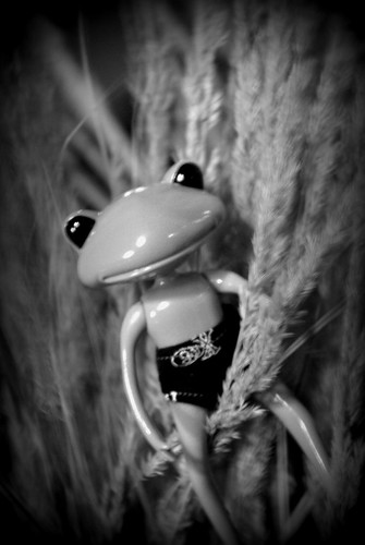 [Wonder Frog Wanda] Grenouille voit la vie en vert 3753697120_4cd972813e