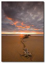 Shipwrecked (ICH-Photos) Tags: uk morning red sea england sky orange sun sunlight seascape color colour beach water weather yellow clouds sunrise canon gold dawn coast waves colours britain patterns north wave rope east northumberland shipwreck alnmouth northsea northeast remains warkworth eos400d canoneos400d