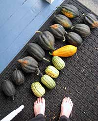 Kris' squash (and feet)