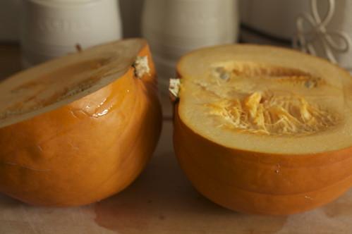 4021740543 e9d2e07f57 How To Make Pumpkin Puree