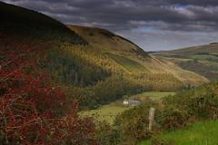 Uldale farm (Petereck) Tags: autumn forest farm cumbria winder fell wilton coldfell westcumbria dentside