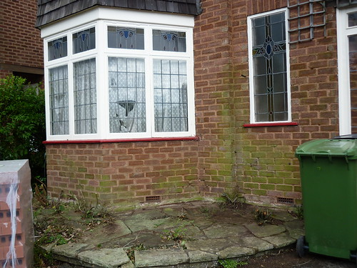 Bay Window - clearing the vegetation