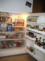 Fridge after (vintage-green) Tags: kitchn apartmenttherapyny