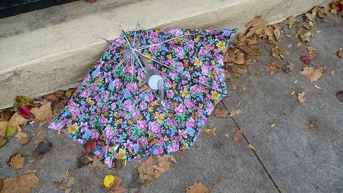 Sad umbrella