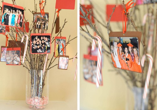 tree[3]