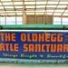 OldHegg Turtle Sanctuary