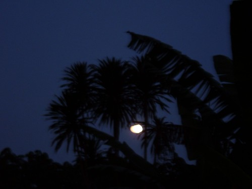 Moonrise in Cameroon