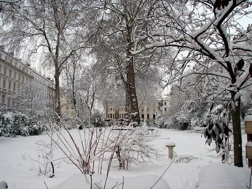 Snowed communal garden