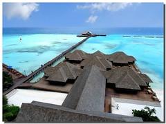 The divided sea (Nespyxel) Tags: sea seascape colors mare blu azure reef maldives colori atoll maldive azzuro olhuveli atollo challengeyouwinner divingcenter nespyxel stefanoscarselli pleasedontusethisimageonwebsites blogsorothermediawithoutmyexplicitpermissionallrightsreserved