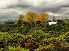 hdr finca sanagus (Juan del Pozo) Tags: san arboles sierra campo otoño agustin finca guadalix