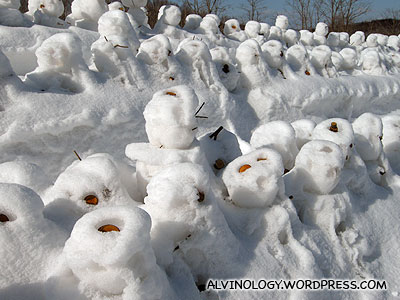 Decomposing snowmen