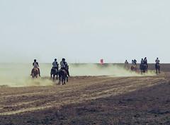 (Ole Lukoie) Tags: nature races kazakhstan hoses steppe horserace nationaldress    galope    aktau  mangistau    kazakhpeople  mangyshlak