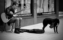 Make a living (Hossein Ghodsi) Tags: street uk bw dog guy hat scotland living blackwhite edinburgh guitar poor blackdog begging princesst    makealiving