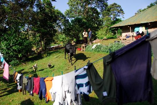 Laden clothesline