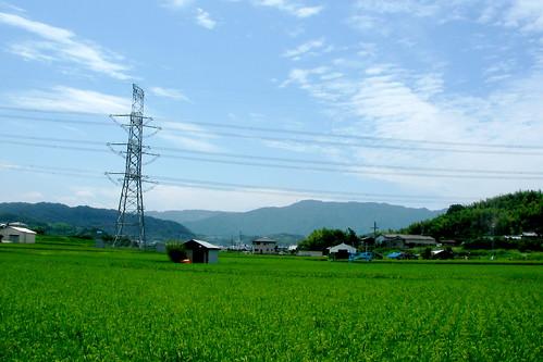 和歌山市 夏の旅行