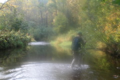 life is a journey... (pjayres) Tags: trees man misty creek river solitude foggy walkingstick mystical hiker wading