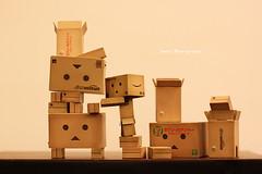 danbodanbo (sndy) Tags: sanfrancisco toy toys box figure figurine sindy kaiyodo yotsuba danbo revoltech danboard   amazoncomjp