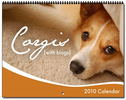 2010 Corgis (with blogs) Calendar