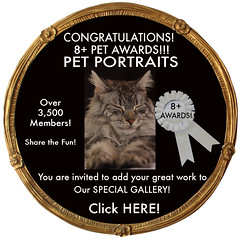 PET<br>PORTRAITS SEEN IN 8+ AWARD CODE No. 1 (by designs 4U in mind)
